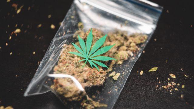 大麻 薬物 ドラッグ